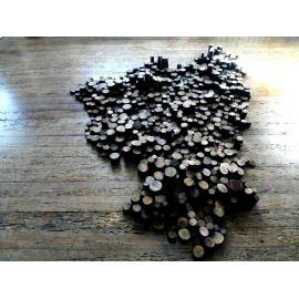 Troncs naturels en bois