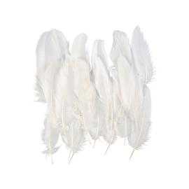 Plume d'oie 15 cm - Blanc -...