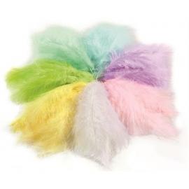 Plumes couleur pastel - Ogeo